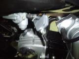 buggy-china20120913ws (3)