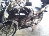 xelvis20111208ws (1)