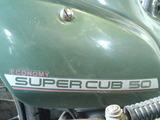 c50-green20120504ws (5)