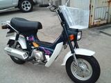 chary50-cf50ws20120613 (1)