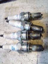 balius20111007ws (22)