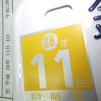 DSCF4236