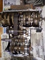 DSCN9494