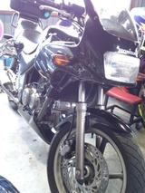 xelvis-mc25ws20120609 (14)
