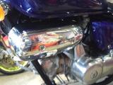 z-magna50ws20120515 (14)