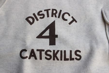 CATSKILLS RANGER