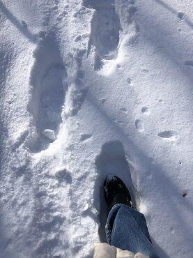 雪だもので3