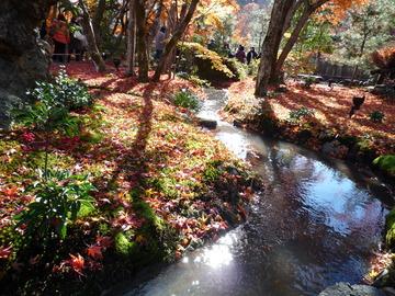 宝厳院庭園