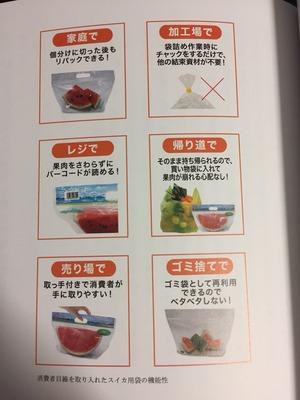 mikaihuu_no_hososhi2