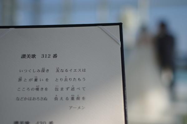 IMGP6241