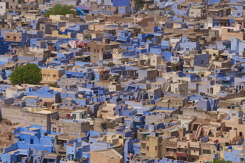 jodhpur+blue+city+2
