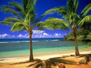 hawaii_ha