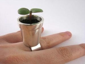 flower-pot-ring-that-grows