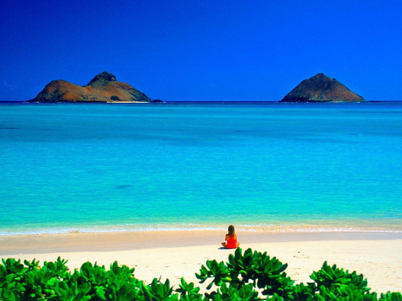 hawaii 卵子提供 さて、弊社では、卵子提供プログラムをタイとハワイでご提供しております。今