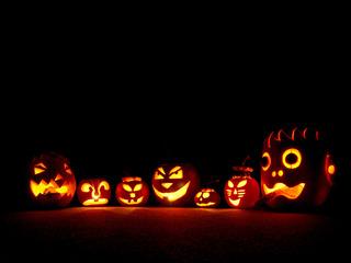 halloween_卵子提供