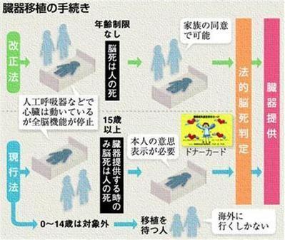 20090713-00000617-san-soci-view-000