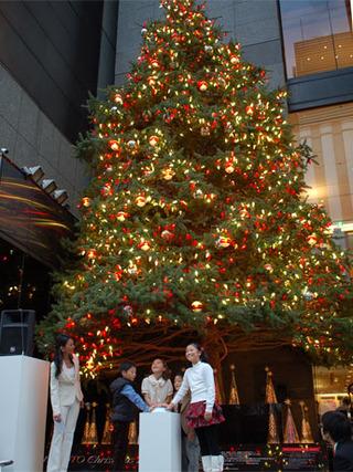 mikimoto_tree
