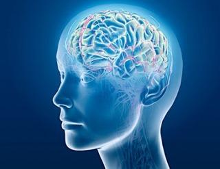 brainwaves3
