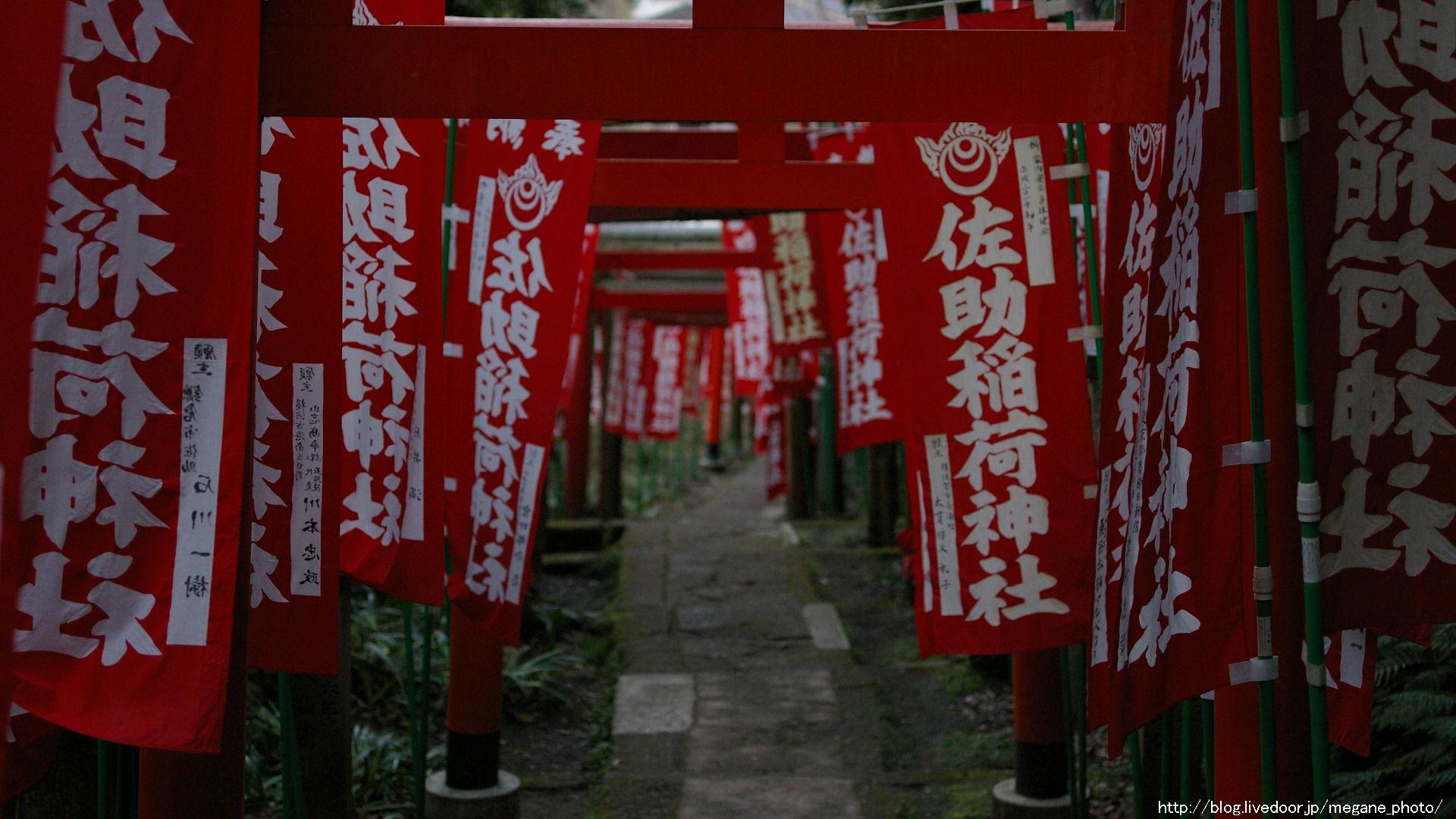 佐助稲荷神社 壁紙フォトグラフ