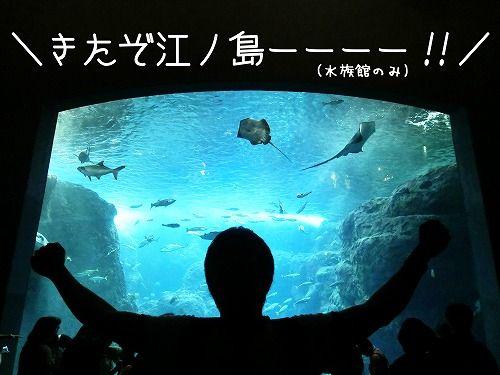 s-江ノ島ー!