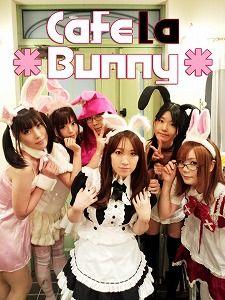 s-Cafe la Bunny