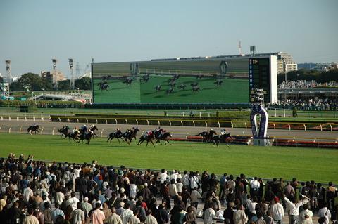 東京競馬1