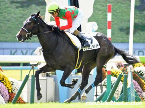 シゲルピンクダイヤ桜花賞2019は2着で馬券的中!オークス競馬予想