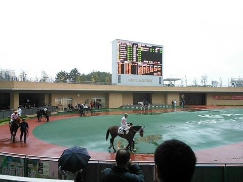 中京競馬場雨