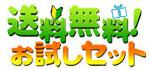 送料無料 元気野菜おためしセット!