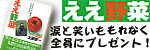 「ええ野菜」(土田賢一著・河出書房新社)
