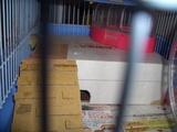 バリアフリー2