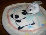 パンダのおさら
