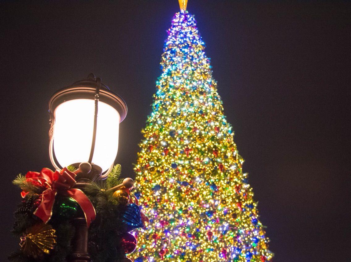 17上海x'mas】たったの5分!?上海ディズニーランドのクリスマスツリー