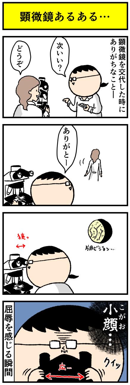 140kogao