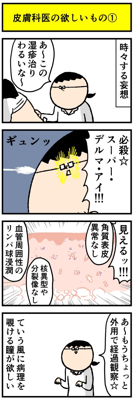 240hihuhosi1