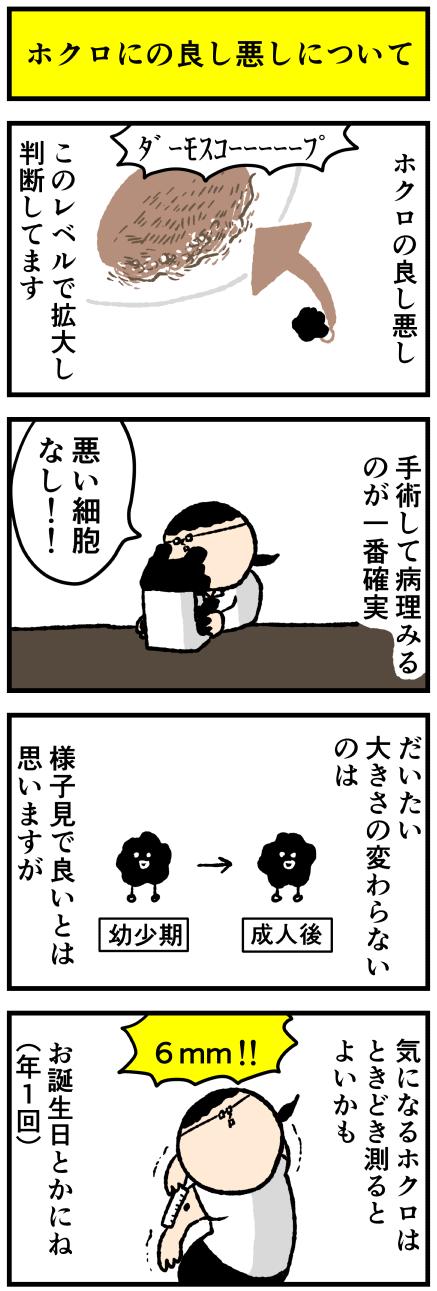 415hoku