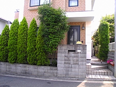 20080624 (3)
