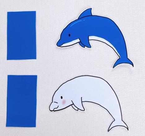 イルカと長方形
