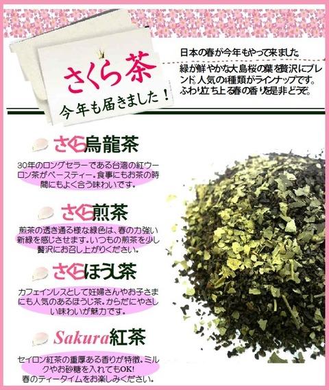 1603さくら茶2