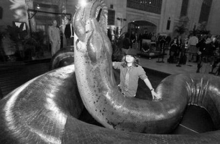 世界一大きい蛇