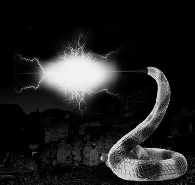蛇テロル01