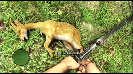 Far Cry 3 ファークライ3 (13)