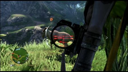 Far Cry 3 ファークライ3 (25)