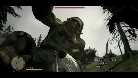 ドラゴンズドグマ12