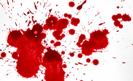 「血」セールちゃんは王のテロルを○○す!