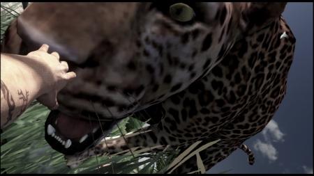 Far Cry 3 ファークライ3 (33)