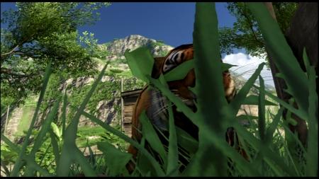 Far Cry 3 ファークライ3 (38)