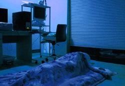 メスの寝室