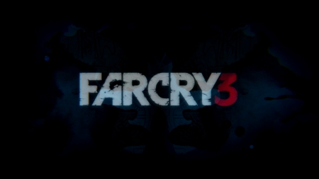 Far Cry 3 ファークライ3 (4)