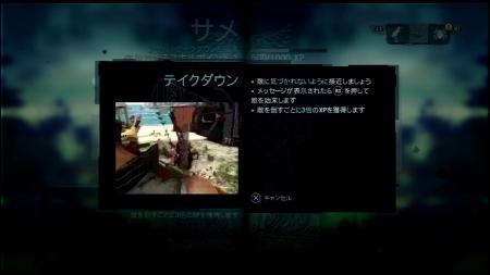 Far Cry 3 ファークライ3 (6)